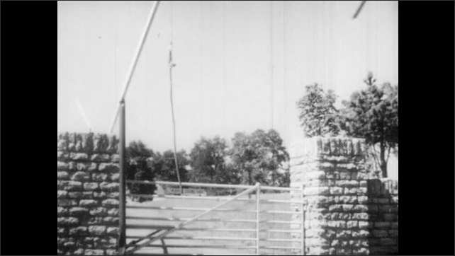 1950s: Horse????s head. Man sits on a tractor, pulls rope that closes gate behind and drives away. Man drives mower behind a fence. Young horse????s head over a fence. Two young horses run.
