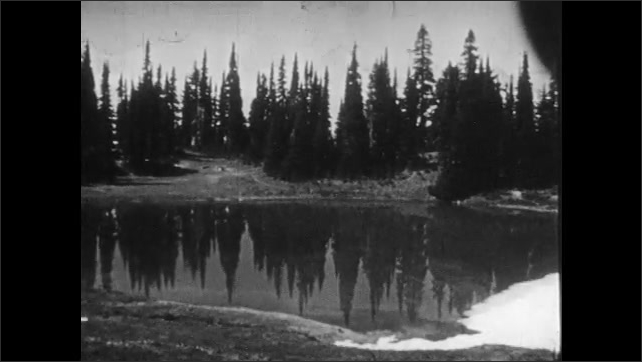 1940s: Fallen log in forest. View of lake. Long shot of cabin in forest.