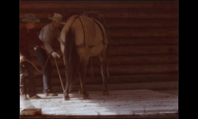 1950s: UNITED STATES: sign on ranch entrance. Man ties up horse. Horse on ground.