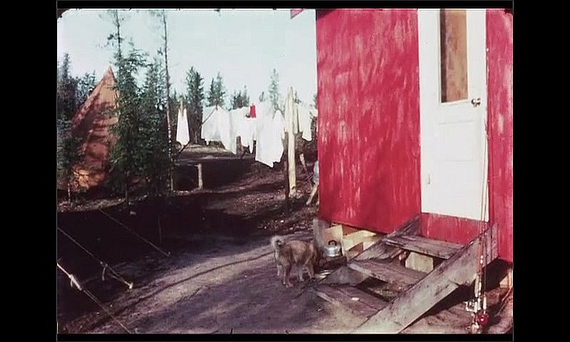 1970s: CANADA: puppy dog walks around building. Lady and men smile by hut.