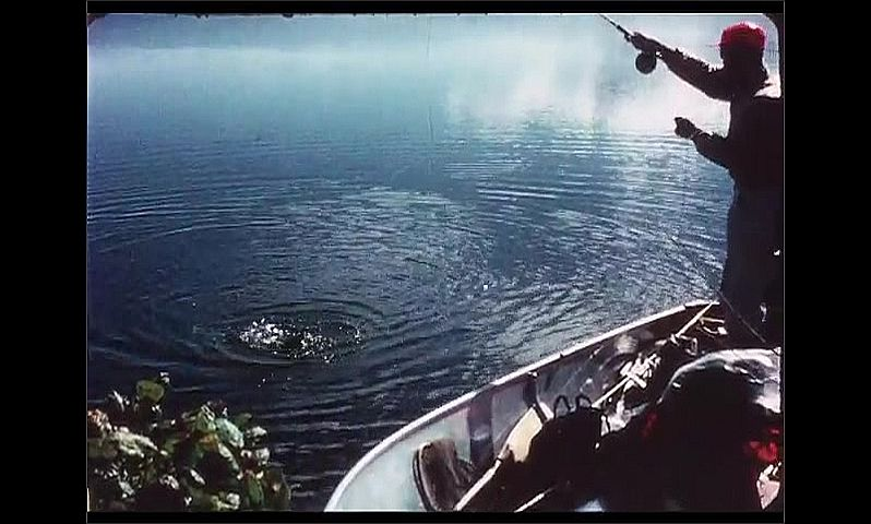 1970s: CANADA: man catches fish on line. Fish fights against line. Man pulls fish up from water.