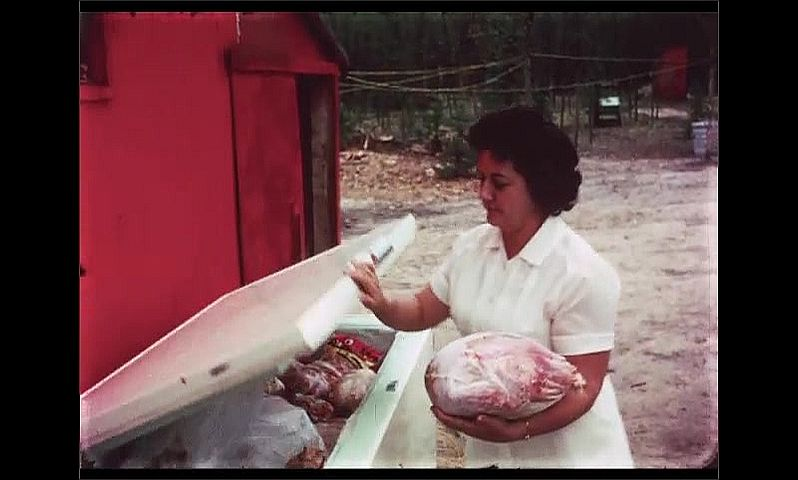 1970s: CANADA: lady takes meat from outdoor freezer. Men with rods on boat by shore