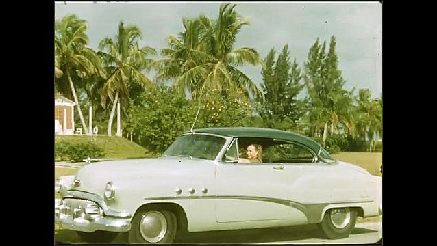 1950s: UNITED STATES: view through orange flowers towards palm trees. Lady in car parked on road.