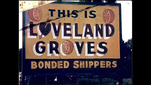 1950s: UNITED STATES: ladies look through window of old stone mill. Trees and flowers. This is Loveland Groves Bonded shippers sign. Oranges on trees