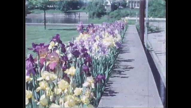1960s: UNITED STATES: flowers in beds by path.