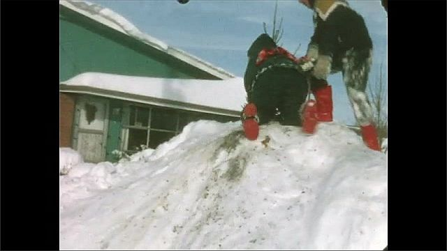 1950s: Boys and girls slide down large pile of snow in yard. Man and children make snowballs and pose near snow pile.