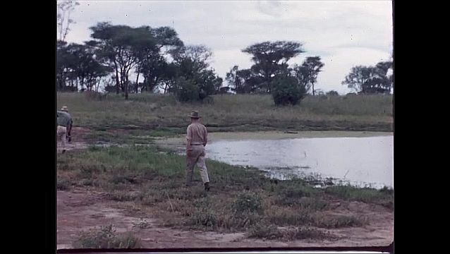 1960s: AFRICA: man walks to watering hole . Man in safari clothes.