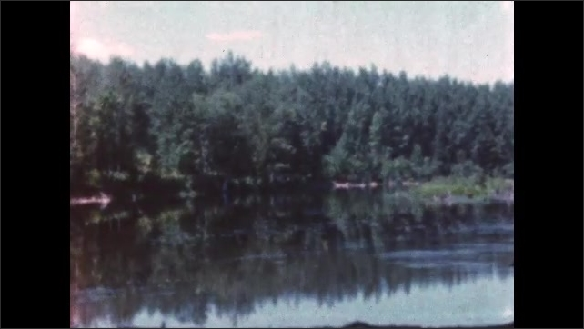 1960s: BRITISH COLUMBIA: CANADA: sunken tree trunks in lake. View across lake towards trees.