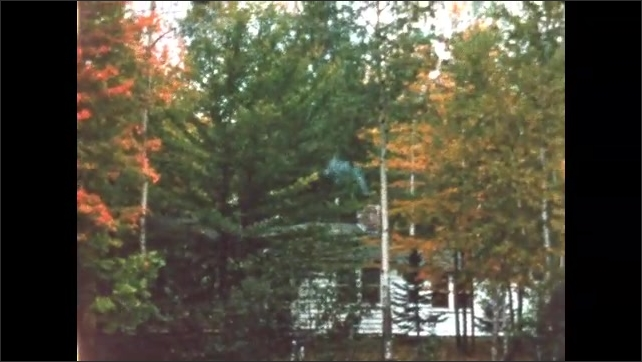 1960s: BRITISH COLUMBIA: CANADA: green and yellow leaves on trees by lake. Red leaves on trees.