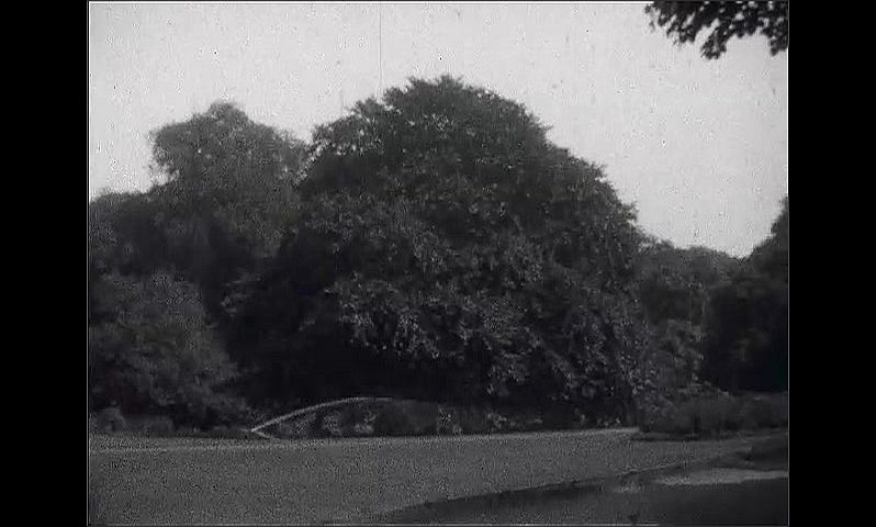 1920s: GERMANY: EUROPE: man stands by car in street. People walk along pavement. Water sprinkler on grass. Public park. Tree in park.