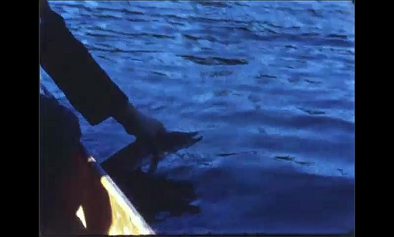 1940s: Man sits in boat reeling line on fishing pole. Man removes hook from caught fish's mouth then places fish back in water. Man reels in caught fish on line.
