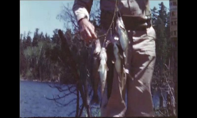 1940s: UNITED STATES: man prepares fish from catch. Man with fish on string. Men prepare fish over camp fire in woods.