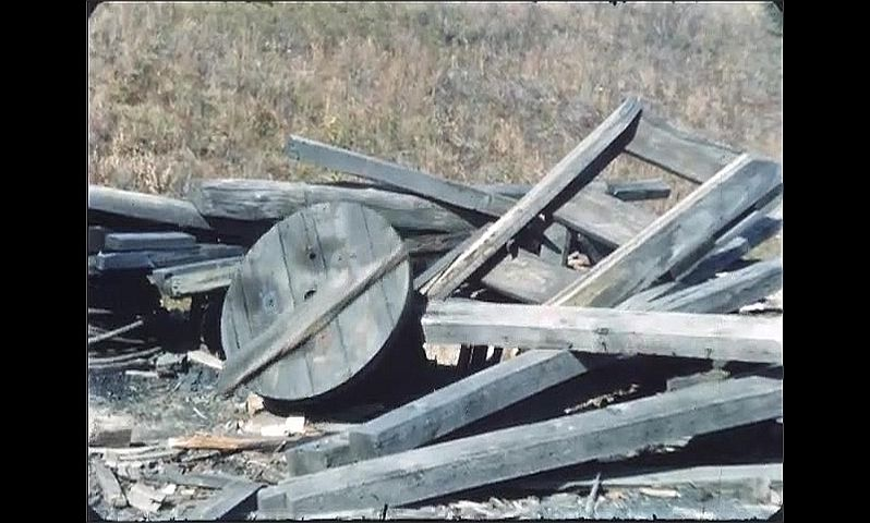1960s: UNITED STATES: man burns wood on pile. Bees inside coil.