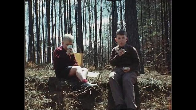 1940s: UNITED STATES: boys climb tree. Boys enjoy picnic in woods. Boy drinks from cup in woods.