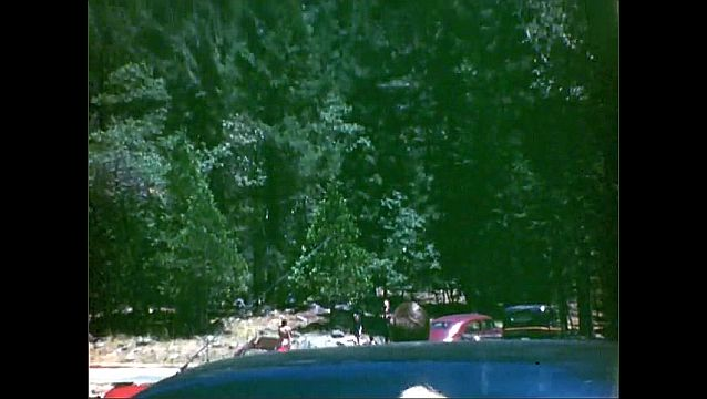 1940s: Deer runs away. Dense forest, redwood trees, large trunks. Cabin, boy waves, cars. Cliff over forest, waterfall. Steep, rocky mountain, lodge, people swim in pool, person dives.