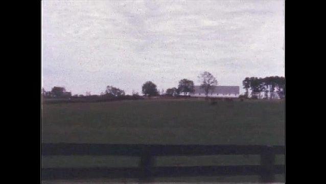 1970s: UNITED STATES: stone wall seen from car window. Building in field. Trees by field.