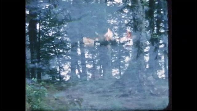 1960s: People row boat on water. Person jumps out of boat, swims in lake. Trees in forest.