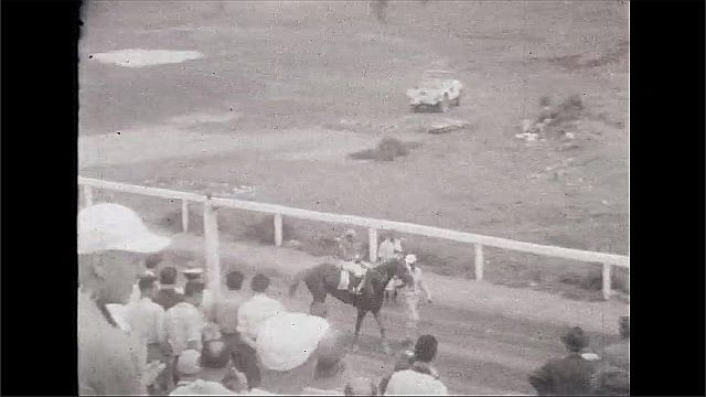 1930s: UNITED STATES: slow motion of horses at end of race. Lady watches race. People in stalls