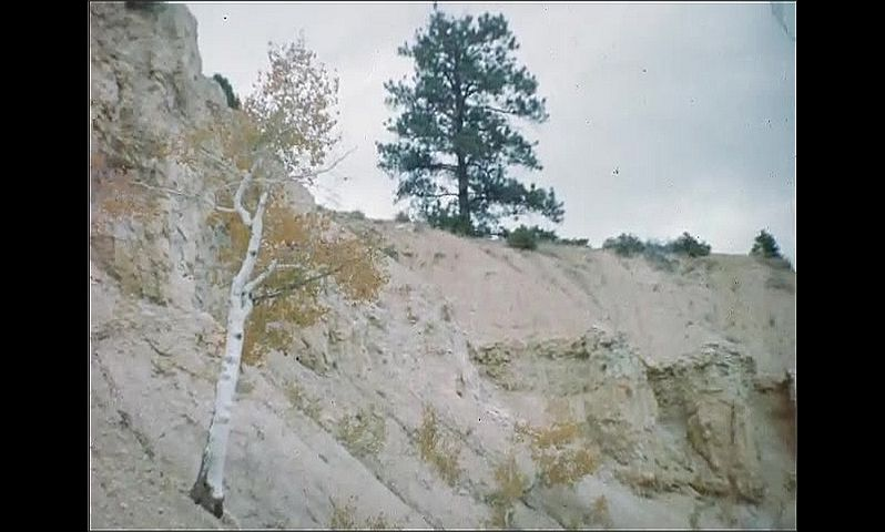 1940s: UNITED STATES: cabin on top of cliff. Tree by cliff. Collapsed cliff side. Ruby's accommodation
