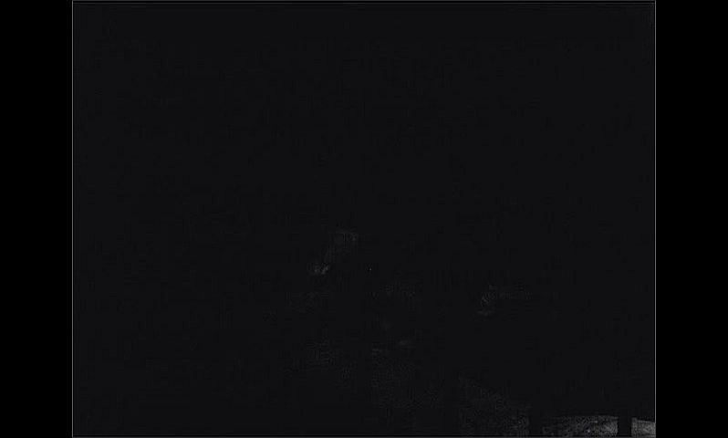 1940s: UNITED STATES: visit to zoo. Darkness in enclosure.
