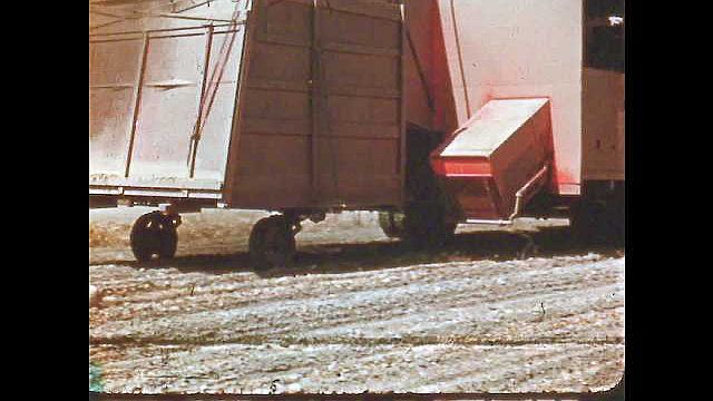 1950s: UNITED STATES: sacks of beans in field. Piles of bean waste on ground. Truck collects sacks of beans