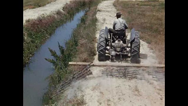 1940s: UNITED STATES: man drives tractor. Tractor cuts bank by water. Whorled Milkweed sign.