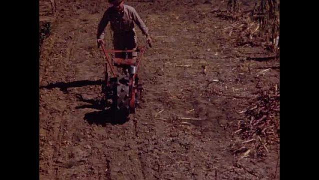 1940s: UNITED STATES: man pushes machine across soil. Man prepares soil. Horse pulls plough in field.