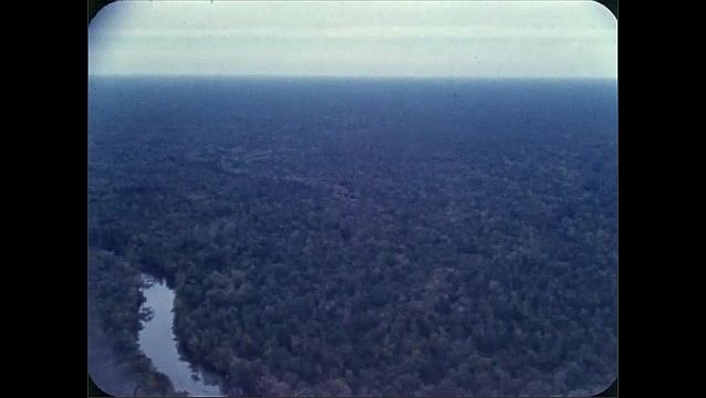 1960s: Aerial view of forest and river.