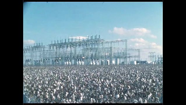 1950s: Electrical power station sits in field of cotton.