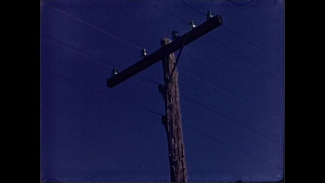 1930s: Termite tracks and damage on exterior of telephone pole. Wires stretch over top of telephone pole. Knot hole and damage on wood of telephone pole.