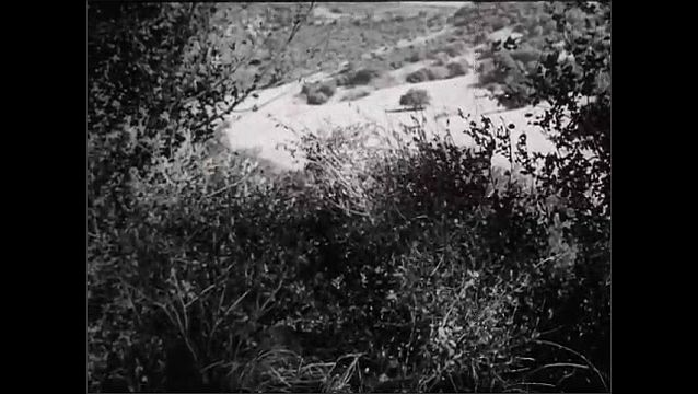 1940s: Soldier hiding in bushes, zoom out. Soldiers walking, fall to ground. Soldier in bushes.