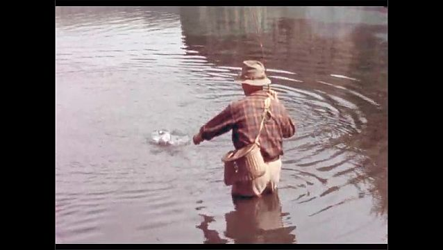 1950s: Man fishing in river, reeling in fish. Close up of man. Man reaches for fish.