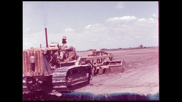 1960s: UNITED STATES: close up of white grapes. Man drives machine across soil. Red grapes on vine.