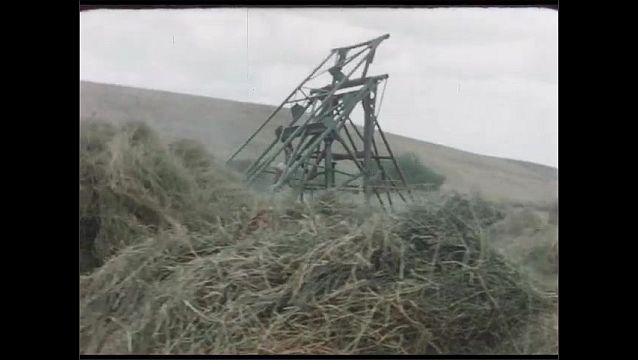 1960s: Farmland in valley. Car drives out of ranch. Tractor pushes hay into pile. Four cows in a field.