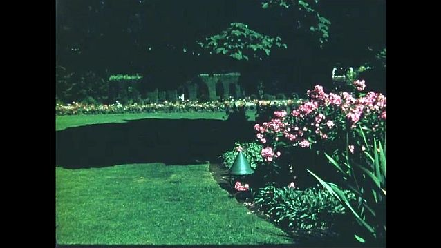 1950s: Flowers, gardens.