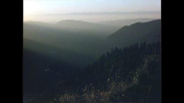 1950s: Mountains. Mount Rainier.