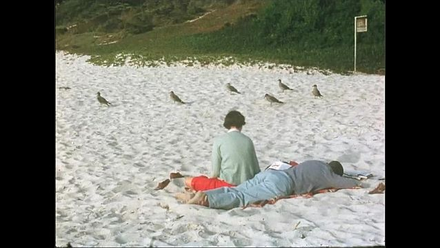 1950s: Seagulls on beach. Man and woman on sand. View of ocean as waves roll in.