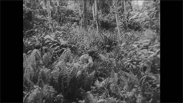 1940s Guadalcanal: Japanese soldiers camouflaged with branches hide in forest. Soldier hides under trap door hidden by grass. American soldier aims at a Japanese soldier in a tree and shoots him down.