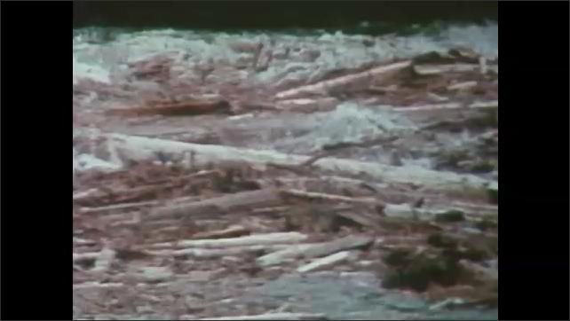 1980s Washington: Mountain.  Raging river pushes trees along.  Cars.  Police arrive.  Debris crashes into metal bridge.