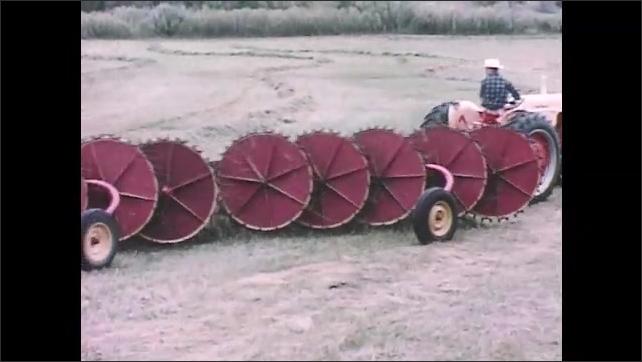 1960s: Man on tractor pulls tandem wheel rakes through fields of cut hay grass. Wheel rakes create large windrows of hay grass. Tractor pulls tandem wheel rakes past large pile of hay.