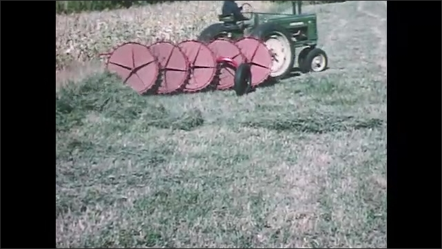 1960s: Tractor pulls agricultural wheel rake across field of cut hay grass. Rake wheels push windrows together to make larger piles.