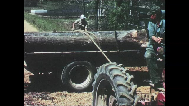 1960s: UNITED STATES: men roll large wooden trunk. Machine moves timber. Tractor used to move wood