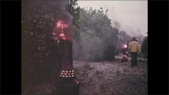 1970s: Man adjusts portable furnace burning in orchard. Flame from furnace burns. Man walks down row of furnaces in orchard. Building with pond and silo on property.