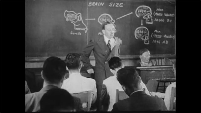 1950s: UNITED STATES: man gives students lecture on brain size. Students sit in lecture. Professor teaches university students. Man writes notes in book