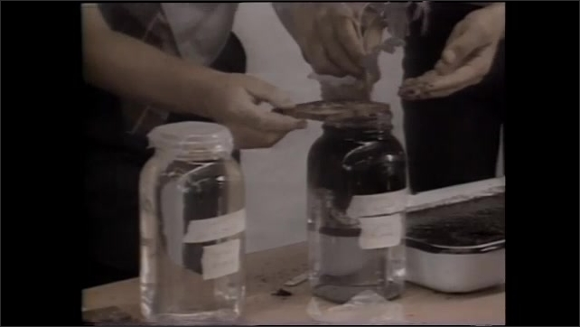 1990s: UNITED STATES: seeds from space tomatoes. Nutrient testing of tomatoes. Plants grow. Eggs on table.