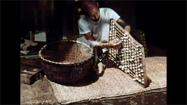 1960s: Cocoons in wooden racks. Woman sitting outside by racks. Man pulls cocoons from rack. Man pulling out cocoons.