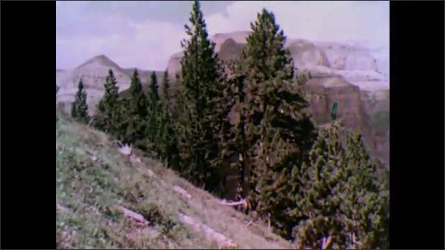 1950s: Mountains.  Trees.