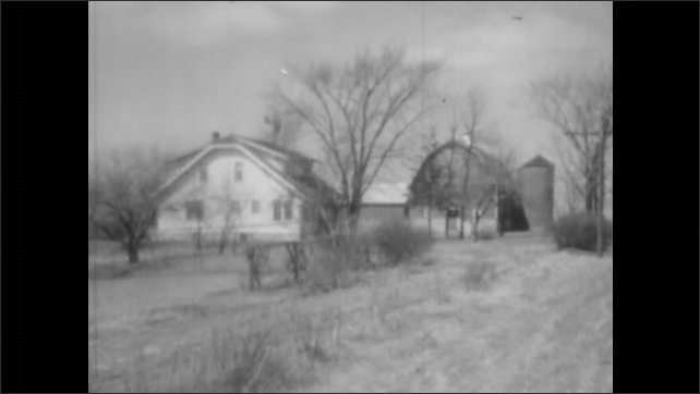 1940s: A farm house, barn, and silo surrounded by bare trees. Two geese eat grass on the lawn. Bare apple trees in an orchard.