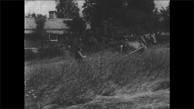 1950s: Two people stand on a field with a hay pile on the ground and an empty trailer with mountains and a lake in background. A farmer cuts hay with horse. Men stack hay in the field.