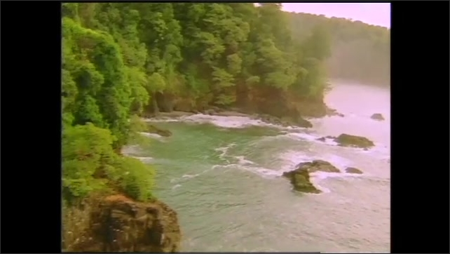 1990s: Graphic visualization of Oxygen and Nitrogen molecules that float in space. Large river flows with cliffs and trees on banks. Swamp seen with trees. Sun shines through trees.